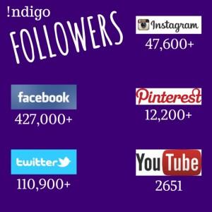 Indigo-Social-Media