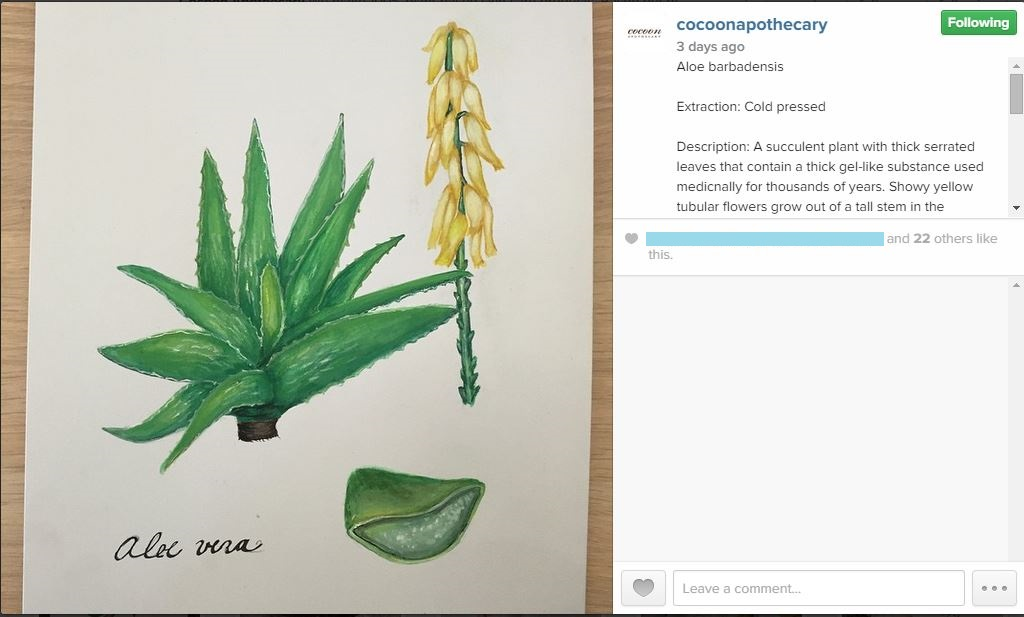 Cocoon Apothecary uses social media to educate consumers about the ingredients in their products.