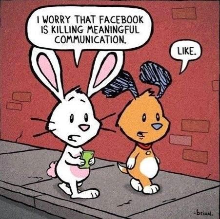 bunny-FB